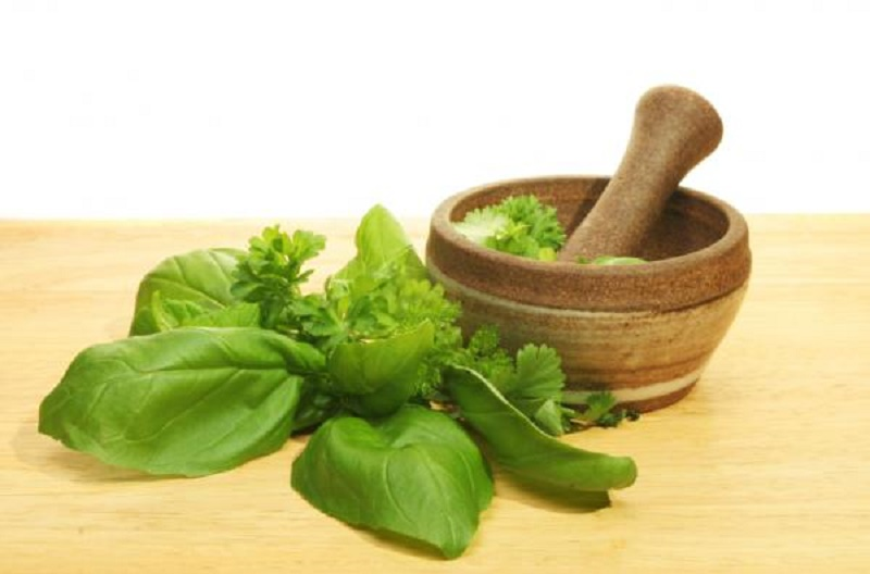 Basil leaves for pimple treatment