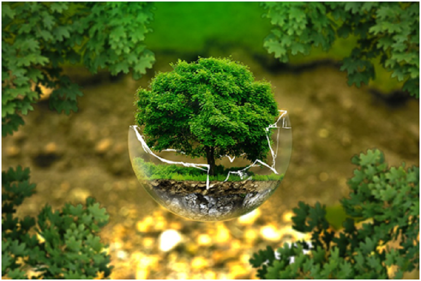 How to Create a Sustainable Lifestyle by Going Lean and Green