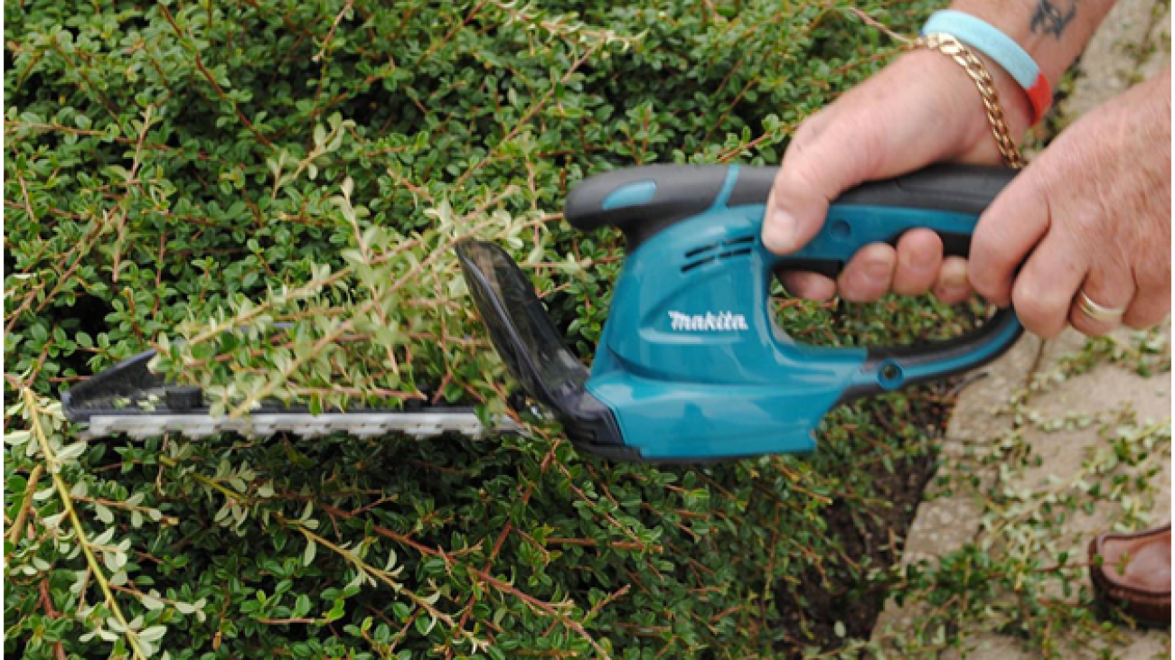 How to Use a Hedge Trimmer Correctly2