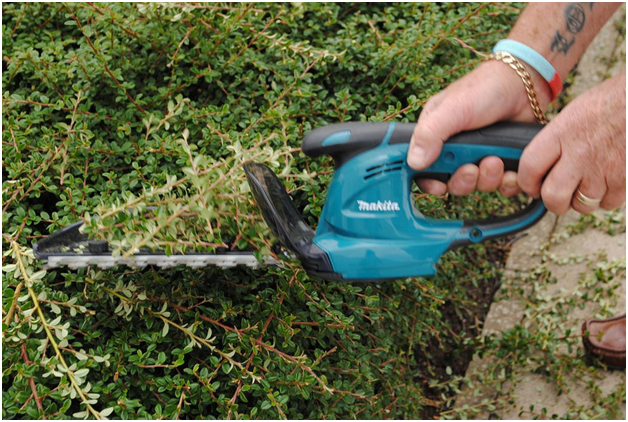 How to Use a Hedge Trimmer Correctly