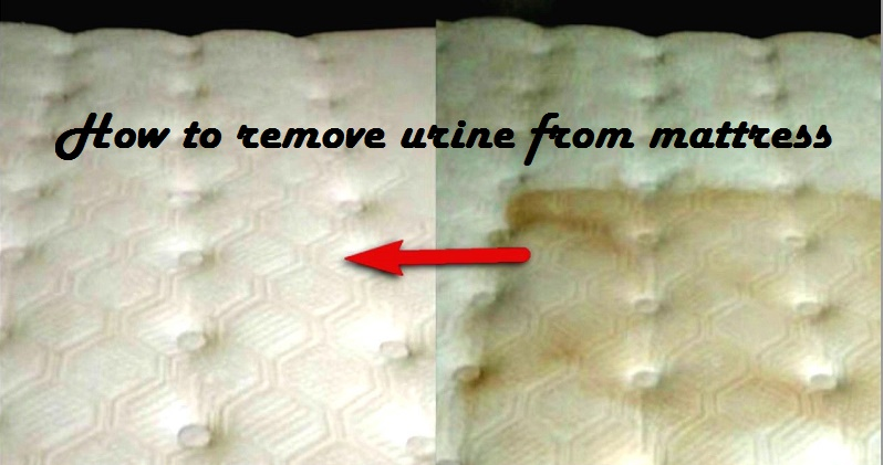 Wet cleaning tips: How to remove urine from mattress