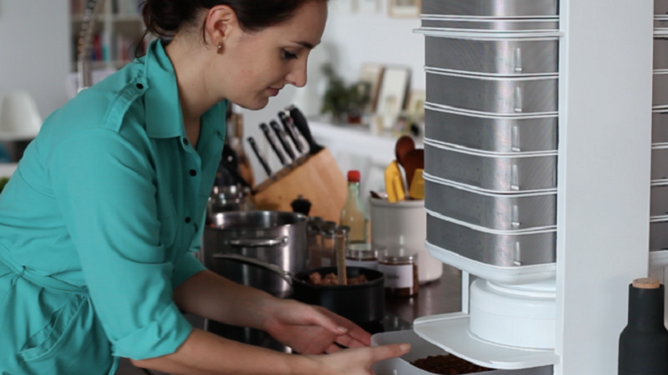 How to get rid of small insects in kitchen