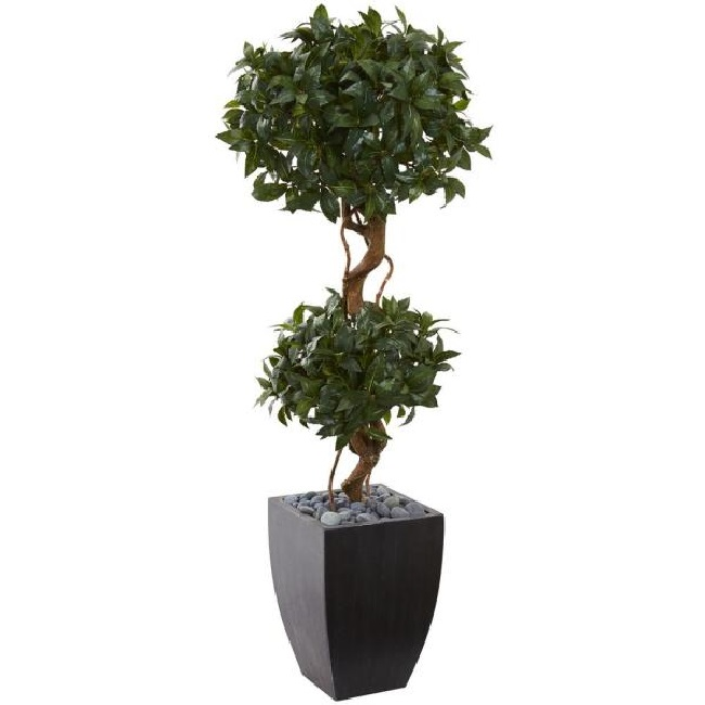 Black planters for home and office