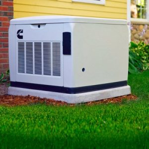 Best whole home generator